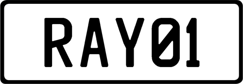 Plate RAY01